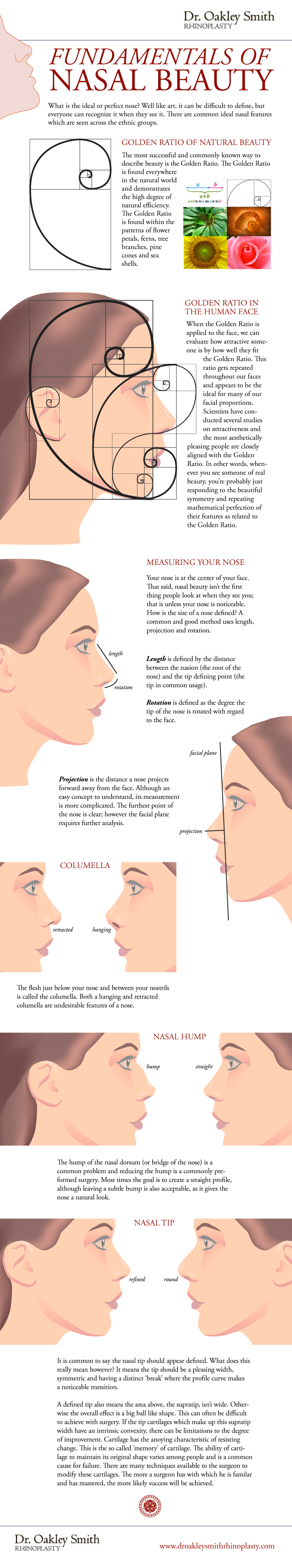 Nasal Beauty Infographic